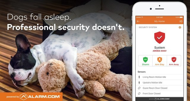 Dogs Fall Asleep, But Not HSI Security Systems